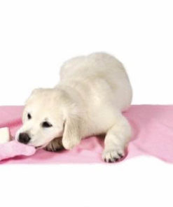 toalla rosa con juguete ideal para entretener