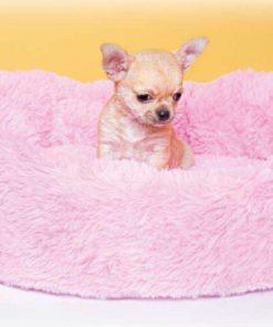 cama baby rosa