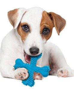 Bone X Especial Cachorros Cambio de Dentición Salvaterra de Magos