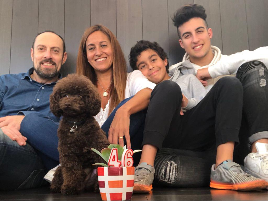 rocco y su familia caniche toy marron chocolate (1)