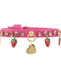 collar strawberry fucsia de la firma italiana piccoli pets. salvaterra de magos criadores de caniches toy
